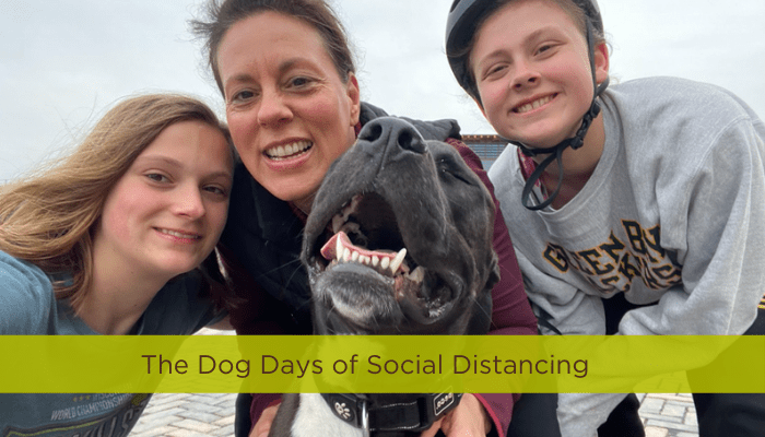 What Your Team Can Learn From Our 90-Pound Foster Dog