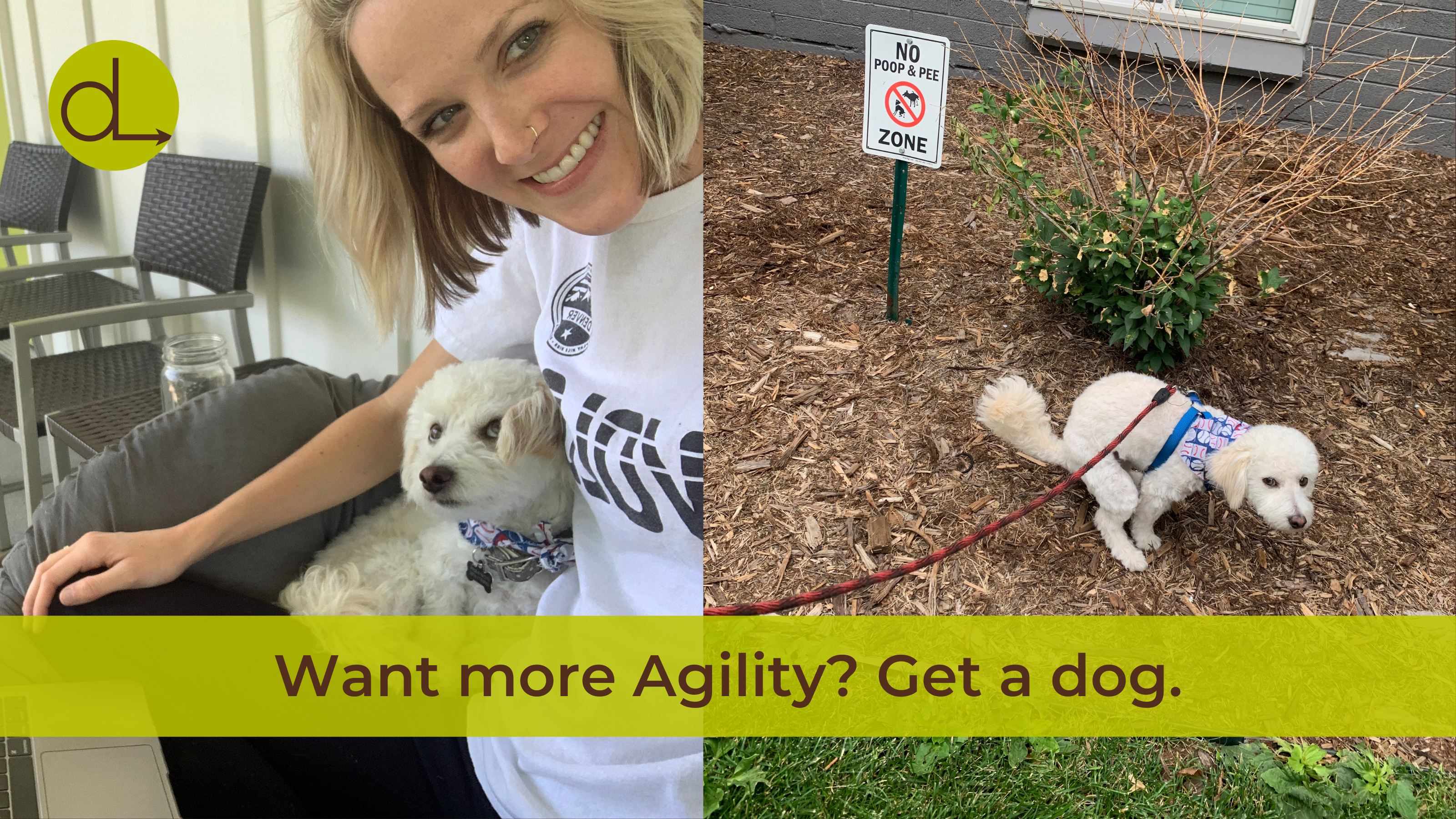 """Two photos side by side. On the left, Kara cuddling her dog, Cosmo. On the right, Cosmo """"doing his business"""" by a sign that warns against it. Across the bottom reads the title """"Want more Agility? Get a dog"""" and the DLCC logo in the upper left corner."""